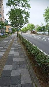 DSC_0483.JPG